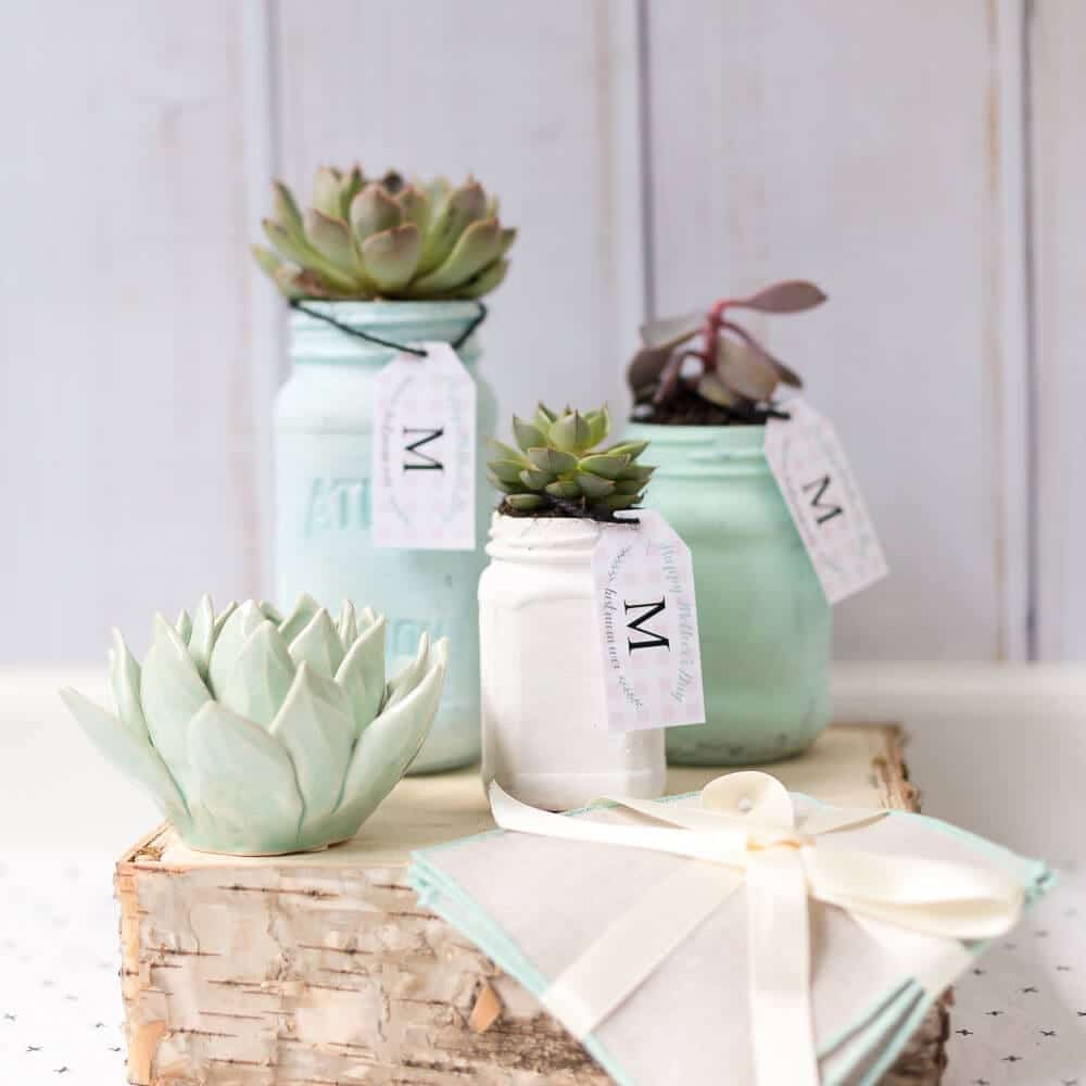 DIY Mother\'s Day Mason Jar Planter and a Free Printable Gift Tag ...