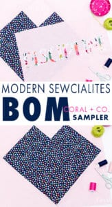 block-of-the-month-quilting-sampler-from-modern-sewcialites