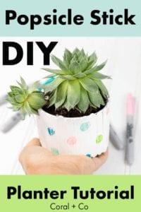 diy-popsicle=stick-planter-tutorial-kids-craft