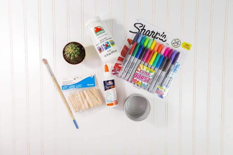 DIY-popsicle-stick-planter-tutorial-with-sharpies